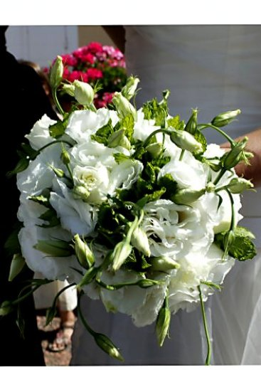 Photographe mariage - Mariageimages - photo 47