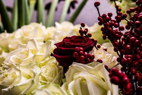 Photographe mariage - François Vézien Photography - photo 10