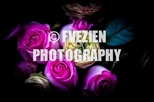 Photographe mariage - François Vézien Photography - photo 44