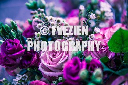 Photographe mariage - François Vézien Photography - photo 41