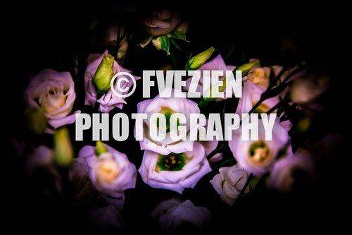 Photographe mariage - François Vézien Photography - photo 61
