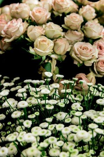 Photographe mariage - François Vézien Photography - photo 66