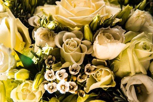 Photographe mariage - François Vézien Photography - photo 16