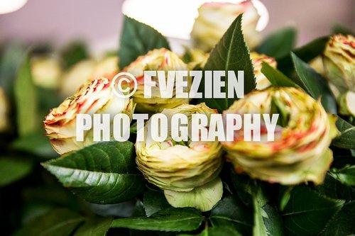 Photographe mariage - François Vézien Photography - photo 65