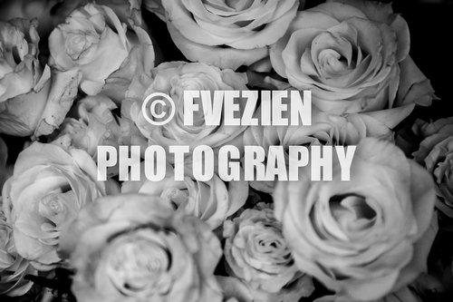 Photographe mariage - François Vézien Photography - photo 59