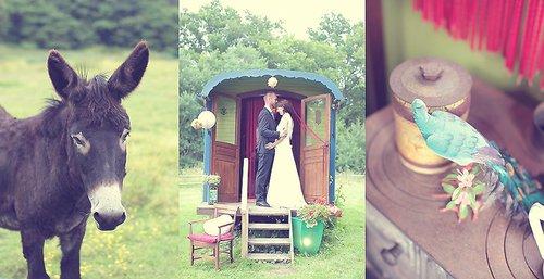 Photographe mariage - Dans mon Jardin Secret  - photo 46