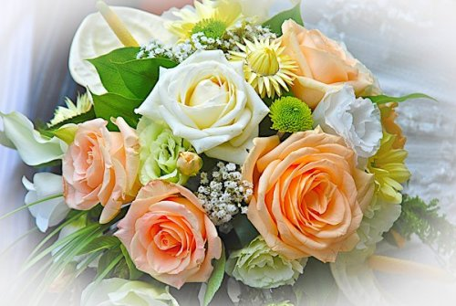 Photographe mariage - YVELINES BABY BOOK - photo 10