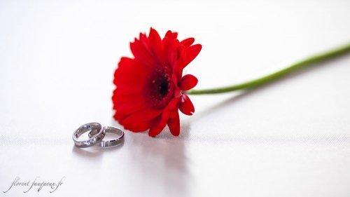 Photographe mariage - Florent Fauqueux Photographe - photo 15