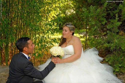 Photographe mariage - Terry White photo - photo 26