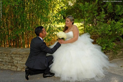 Photographe mariage - Terry White photo - photo 25