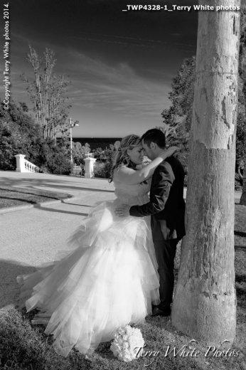Photographe mariage - Terry White photo - photo 21