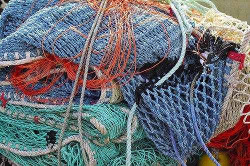 Photographe - btorrubia.com - photo 46