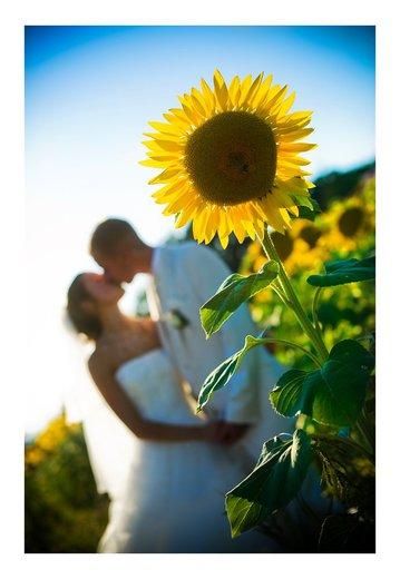 Photographe mariage - Zilia Photographie - photo 20