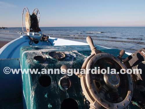 Photographe - ANNE GUARDIOLA - photo 24