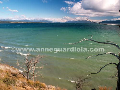 Photographe - ANNE GUARDIOLA - photo 13