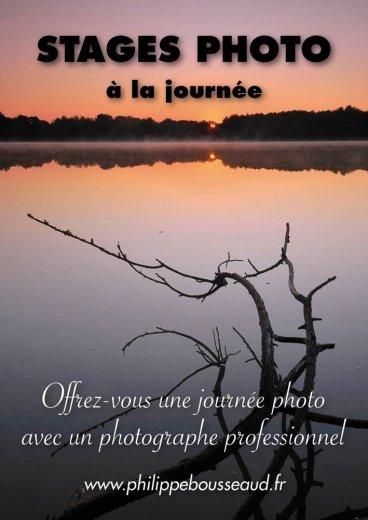 Photographe - Jardin des Arts - photo 1