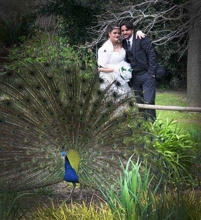 Photographe mariage - L'INSTANTphoto11  - photo 9