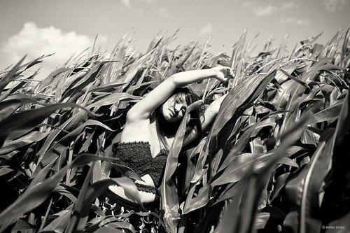 Photographe mariage - stefan bodar photography - photo 21
