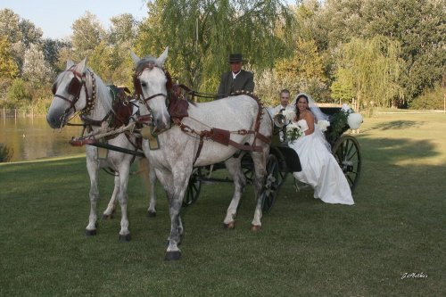 Photographe mariage - Mathias - photo 25