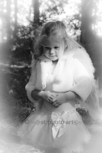 Photographe mariage - ST Photo Art - photo 18