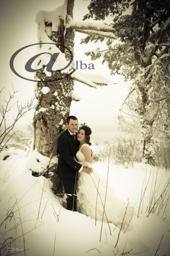 Photographe mariage - ALBA PHOTOGRAPHIE - photo 22