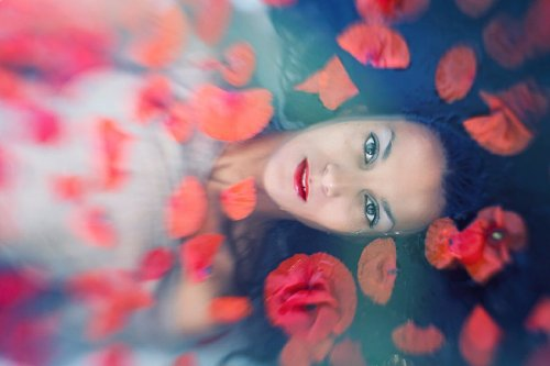 Photographe - Tchaikovski Artem - photo 17