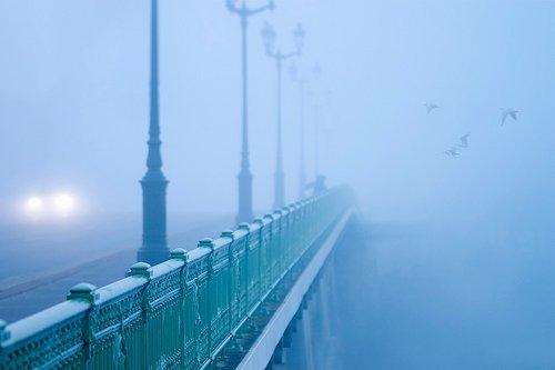 Photographe - Tchaikovski Artem - photo 9