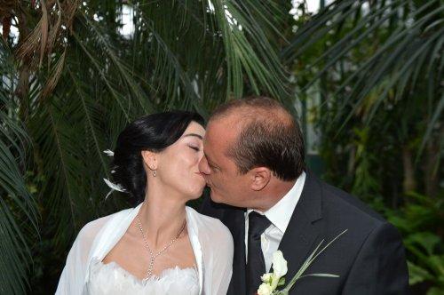 Photographe mariage - Olivier Steigel - Photographe  - photo 67