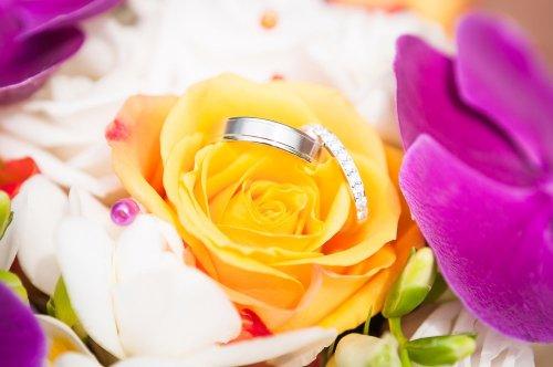 Photographe mariage - Sonia BLANC - Photographie - photo 61