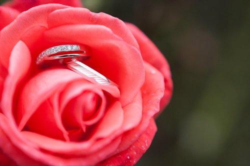 Photographe mariage - Sonia BLANC - Photographie - photo 36
