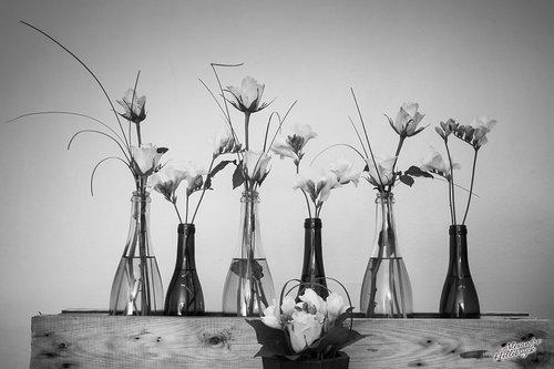 Photographe mariage - Alexandre Hellebuyck - photo 18