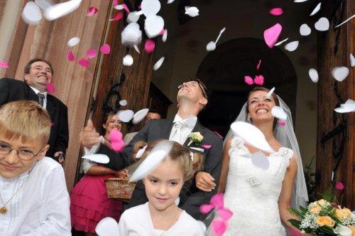 Photographe mariage - STRASBOURG PHOTO P. BOEHLER - photo 61